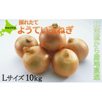 ようてい玉ねぎLサイズ10kg≪北海道ようてい産≫(Lサイズ)