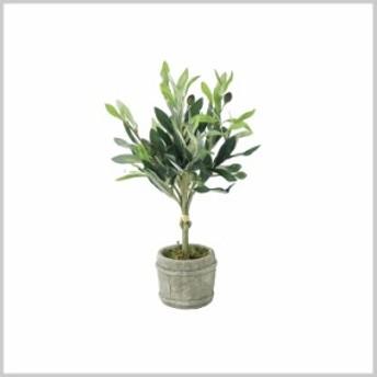 造花 インテリア 観葉植物 イミテーション 植物 DECOR IMITATION OLIVE Sサイズ