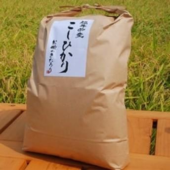 【令和元年産】福井県産コシヒカリ 白米 10kg