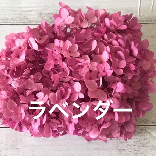 アジサイラベンダー小分け ️ハーバリウム花材プリザーブドフラワー