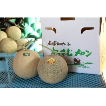 【季節限定】ささき農園産メロン(お任せ2玉)