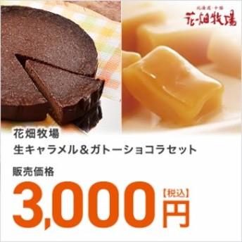 送料無料 花畑牧場 生キャラメル&ガトーショコラセット 北海道 ケーキ スイーツ チョコレート