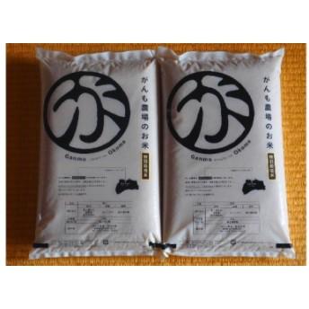 【令和元年産 新米予約受付中!】がんも農場のお米 しっかり食べたい10kg(白米)
