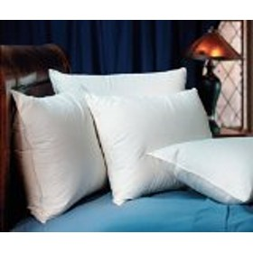 Pacific Coast Down Surround Standard Pillow Set (2 Standard Pillows) by Pacific Pillows