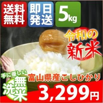 無洗米 5kg 送料無料 新米 コシヒカリ 富山県産 令和元年産 1等米 米 5キロ お米 クーポン対象
