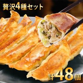 宇都宮餃子館 贅沢4種餃子セット (健太・ゆば・エビ・フカヒレ)計48個