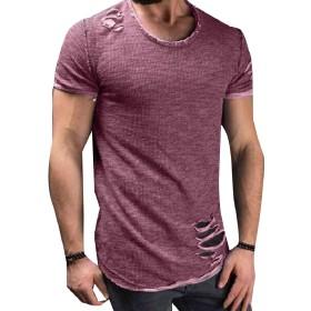 VITryst メンズ半袖ホールクルーネックプルオーバーカジュアルブラウスTシャツトップス Purple S