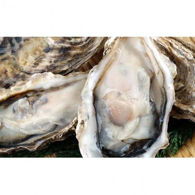 湧別サロマ湖産かき【COYSTER(むき身)×1+殻付き龍宮牡蠣3kg】