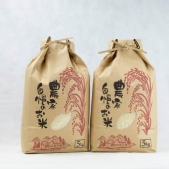 【鹿児島県南さつま市産】農家自慢のお米 10kg