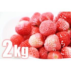 冷凍いちご(さがほのか)2kg しもむら農園 1万円コース