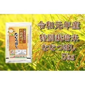 令和元年産 JA新すながわ産特別栽培米ななつぼし5キログラム【新米】
