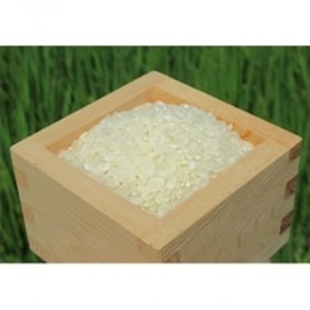 環境こだわり農産物 みずかがみ 白米5kg