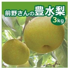 前野さんの豊水梨 3kg