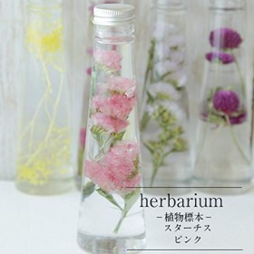 [カドゥ] herbarium Bottle ハーバリウムボトル スターチス(ピンク) プチギフト