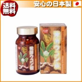 (送料無料)健康フーズ 発酵ウコン粒 7315