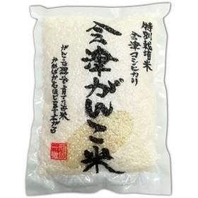 令和元年新米 会津がんこ米 コシヒカリ 特別栽培米 白米3合パック10セット