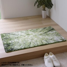 玄関マット トルコ製 ウィルトン織 『ガイア』 約60×90cm 2046669