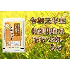 令和元年産 JA新すながわ産 特栽米ななつぼし5キログラム【新米】