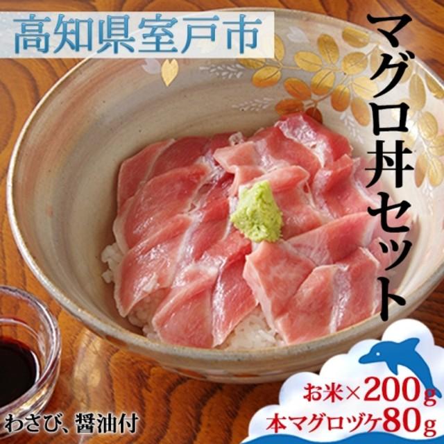 HN040マグロ丼セット