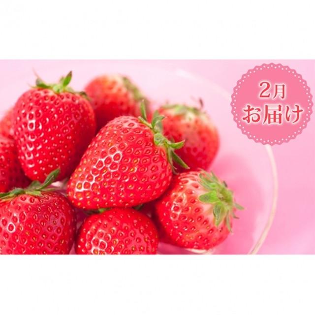 【2月お届け】3種のいちご食べ比べセット(1パック約420g) 化粧箱入り
