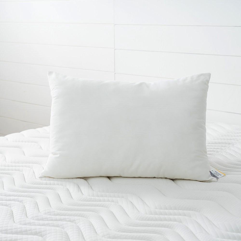 HOLA 記憶紗防螨抗菌大童枕