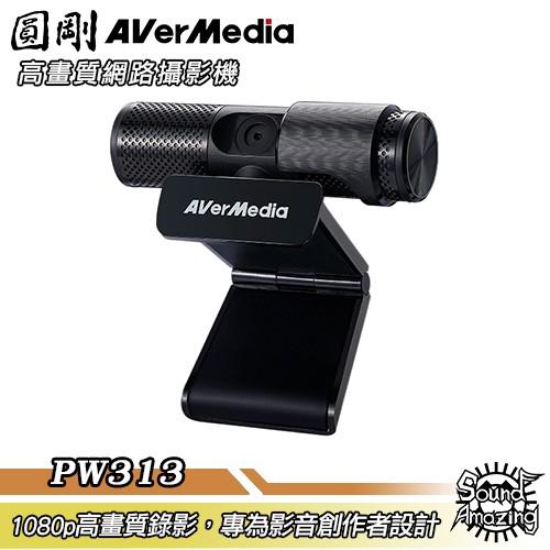 圓剛 PW313 Live Streamer CAM高畫質網路攝影機【Sound Amazing】