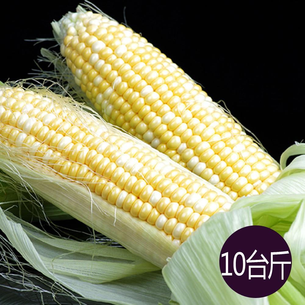 【鮮採家】水果玉米10台斤1箱(約18-25支)