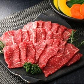 長崎和牛焼肉用赤身肉400g 精肉