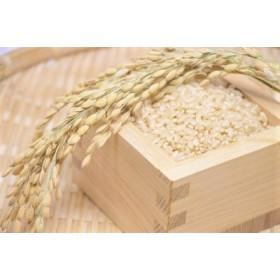長野県飯綱町の黒川米【玄米】 風さやか5kg(令和元年産)特別栽培米