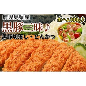 鹿児島県産黒豚切落とし・とんかつ+生ハム100g