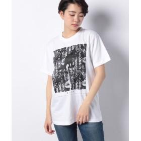 カンゴールリワード ボタニカルストライプ半袖Tシャツ ユニセックス ホワイト L 【KANGOL REWARD】