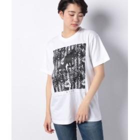(KANGOL REWARD/カンゴールリワード)ボタニカルストライプ半袖Tシャツ/ユニセックス ホワイト