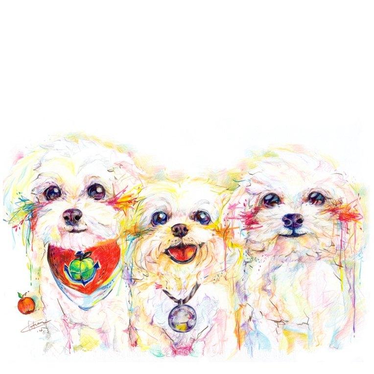 "Pet Portrait 寵物肖像 / 21x30cm (8x12"") / 三隻一張 / 色鉛筆"