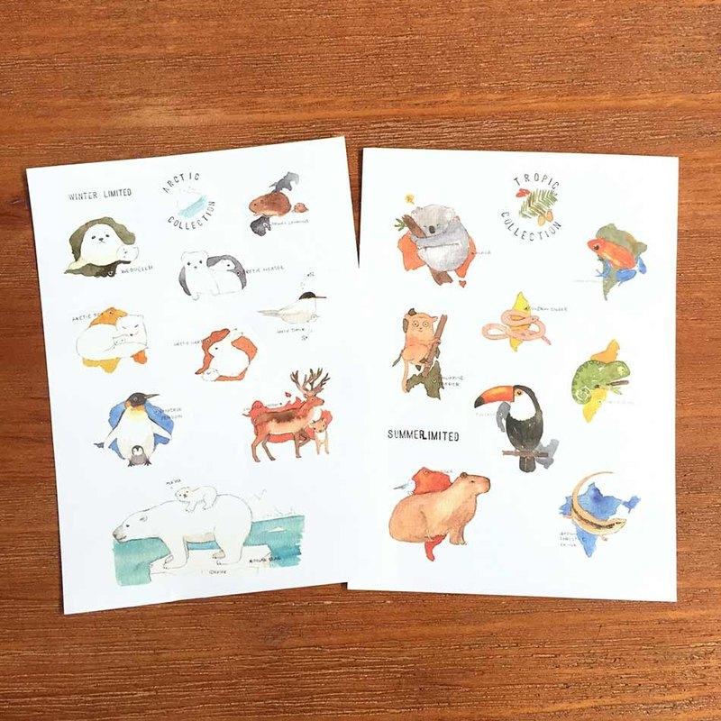 Shine水彩動物圖鑒和紙貼紙-極地和熱帶動物