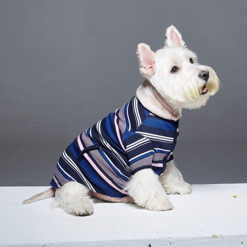 圓領變化條紋造型寵物衣-加寬版