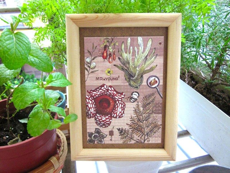 ☁明信片-植物學家