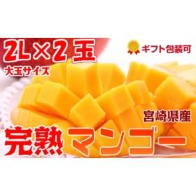 2020年4月中旬から順次出荷<大玉 2Lサイズ>宮崎県産 完熟マンゴー 2玉 化粧箱入り【B211-02】