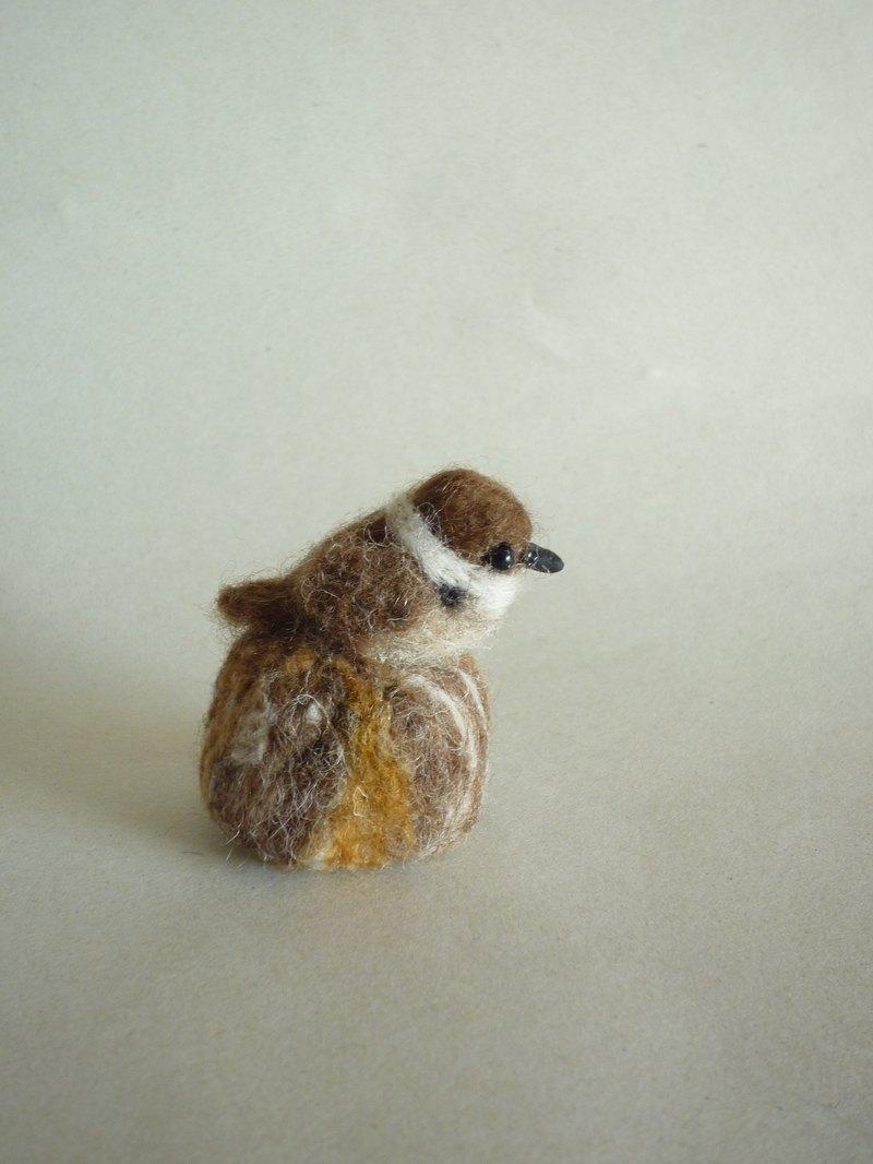 羊毛氈麻雀與殘端扣