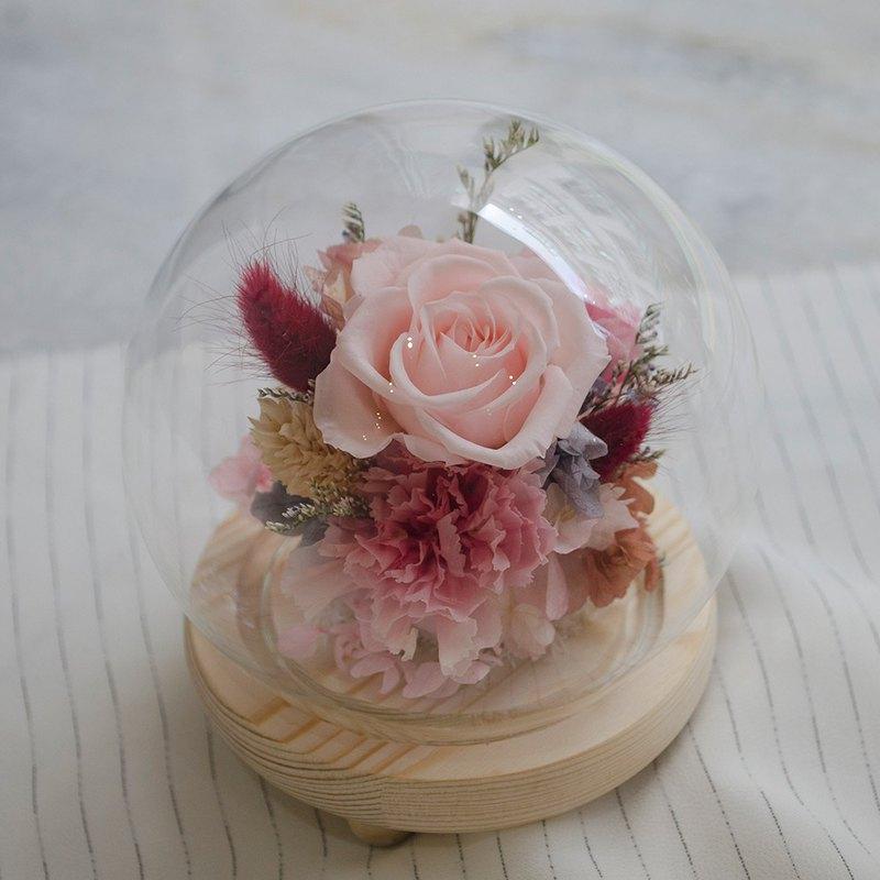 粉紅永生花玻璃球 中型玻璃罩 母親節康乃馨 永生玫瑰