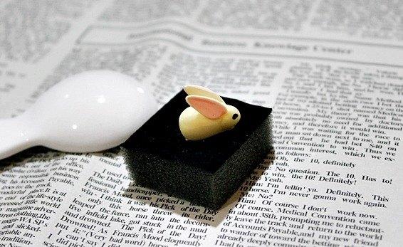 *兔兒蹦蹦*-耳機塞系列-限量X1