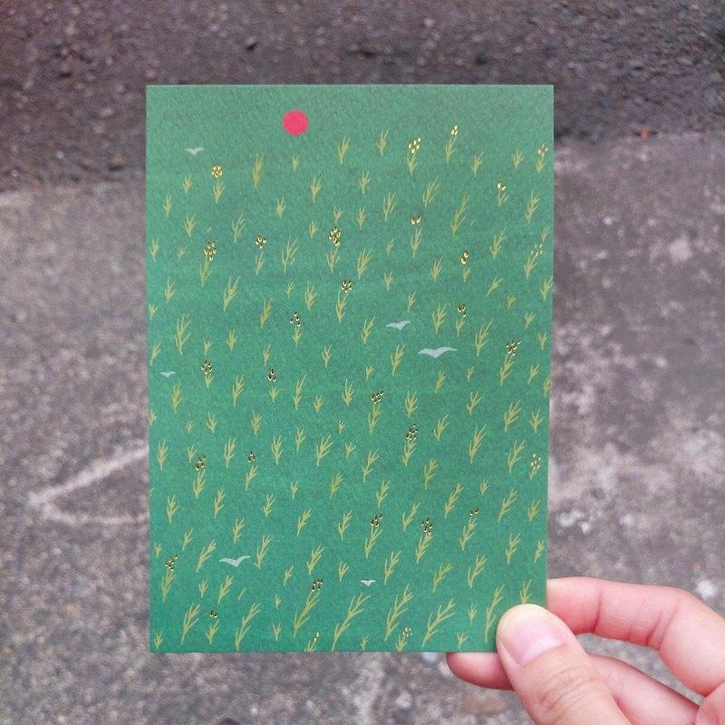 明信片-纍纍稻穗,是豐盛的模樣