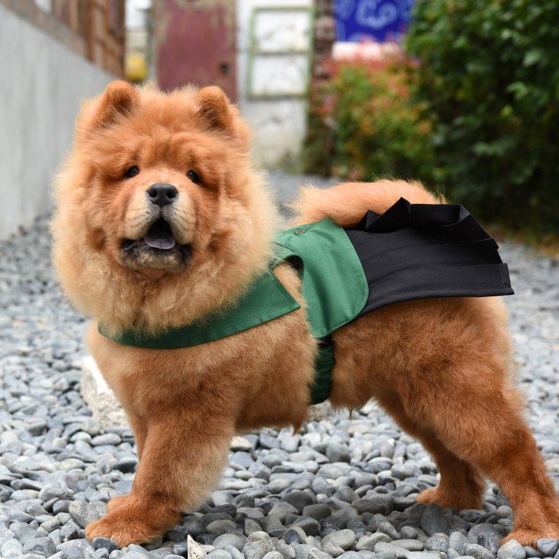 【ZAZAZOO】小綠綠寵物學生服-女生裙子