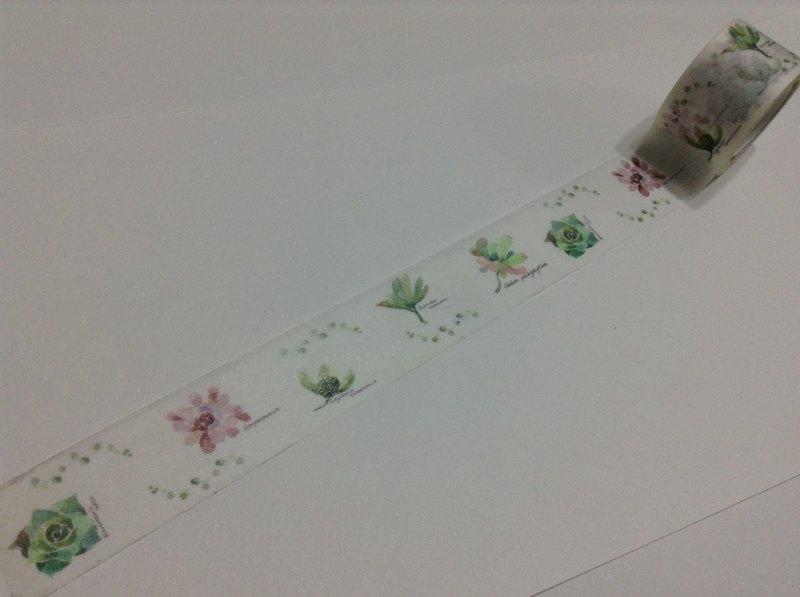 紙膠帶 多肉植物