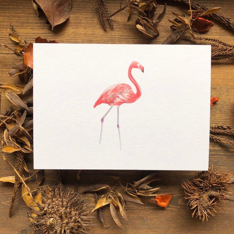 鳥鳥系列 紅鶴 明信片