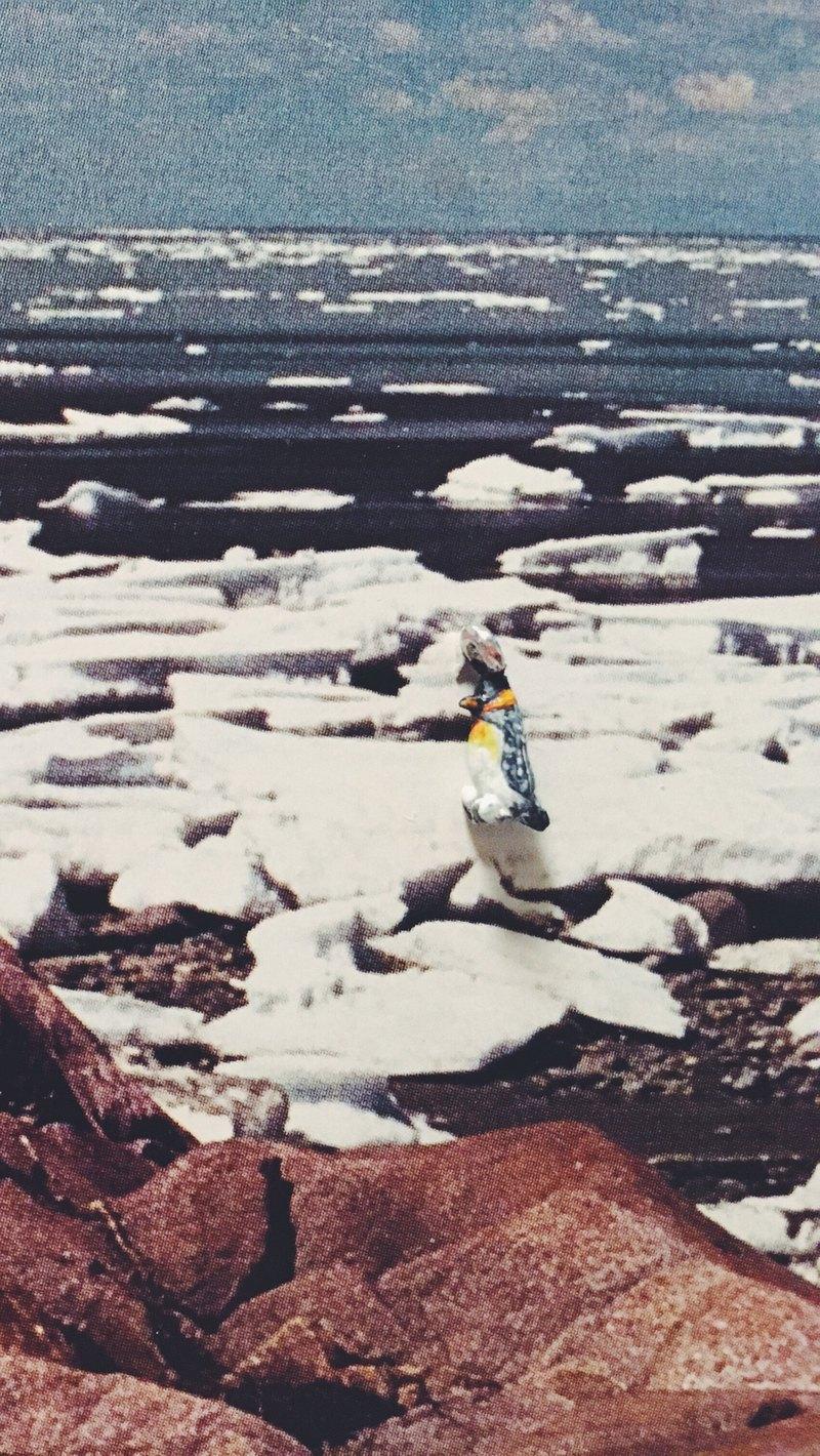 手繪墜子 - 國王企鵝 /aptenodytes patagonicus/ キングペンギン