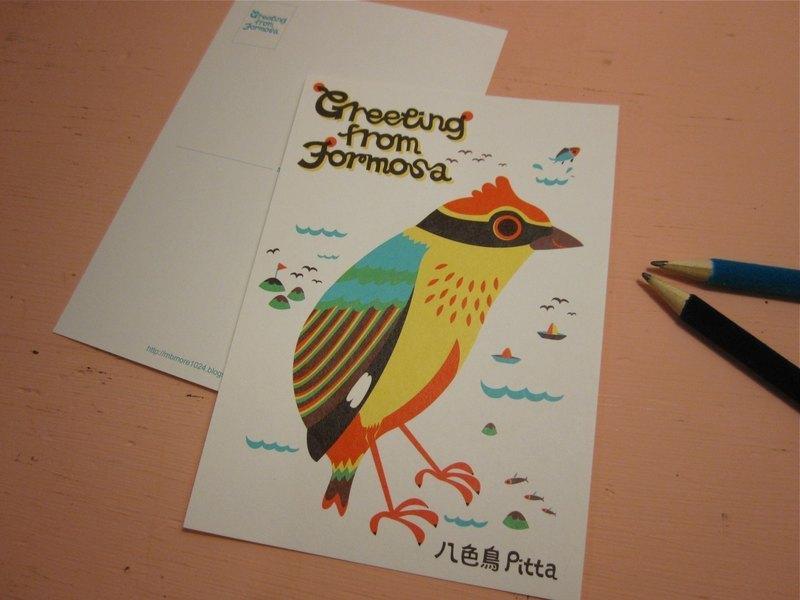 版印明信片:Greeting from Formosa台灣特有種生物明信片-八色鳥