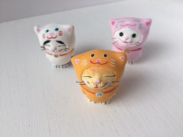 貓佩帶貓茶老虎和茶老虎
