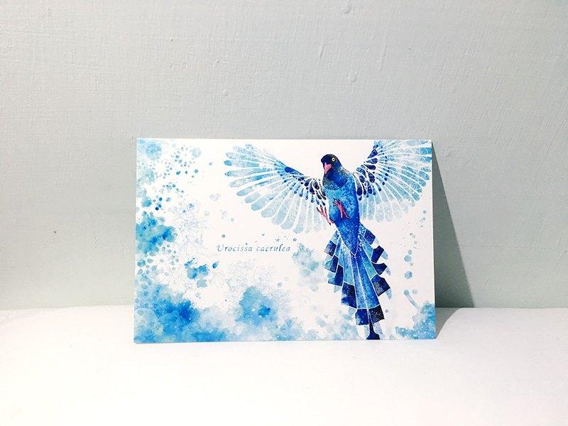 臺灣之鳥 台灣藍鵲 /雙面明信片postcard