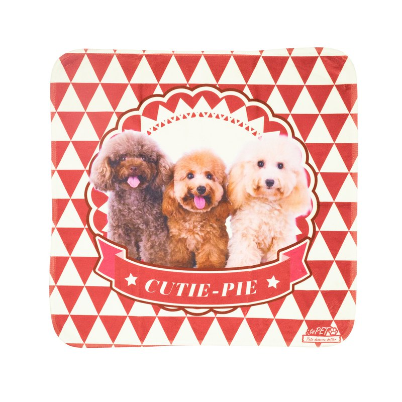 【 :toPET客製化】寵物毛巾