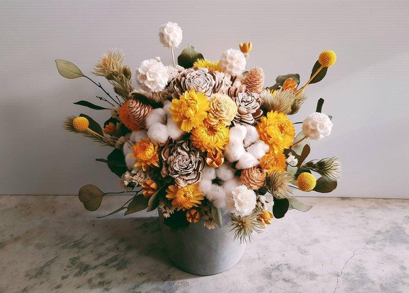 白黃色系乾燥水泥盆花│萬用祝賀花禮│居家裝飾│